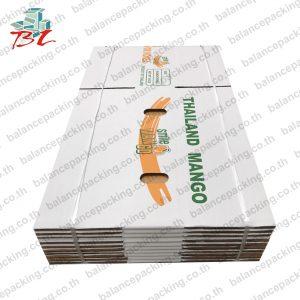 กล่องมะม่วง_MangoBox